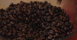 De Bonen van de premiekoffie na het Roosteren, Grond in een Koffiemolen Voorraadlengte Conceptenbegin de Dag met Koffie stock videobeelden
