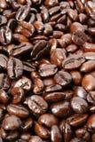 De achtergrond van koffiebonen royalty-vrije stock fotografie