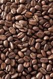 De bonenachtergrond van de koffie Stock Foto's