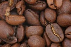 De bonenmacro van de koffie Stock Fotografie