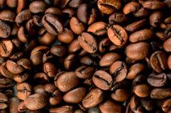 De bonentextuur van de koffie. Stock Fotografie