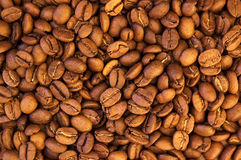 De bonenthema van Cofee Stock Afbeelding