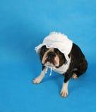 De bonnet van de baby Royalty-vrije Stock Fotografie