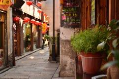 De bonsaiinstallaties buiten een bar bij de Shantang-Straat Suzhou, China worden geplaatst dat royalty-vrije stock afbeeldingen