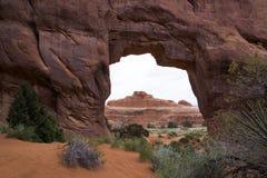 De Boog van de pijnboomboom, Bogen Nationaal Park, Moab Utah Stock Foto