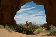 De Boog van de pijnboomboom, Bogen Nationaal Park, Utah, de V.S. royalty-vrije stock fotografie