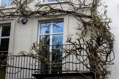 De boom die langs de muur rond het venster winden en balkon op de eerste verdieping stock foto