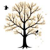 De boom en de kraaien van de herfst Stock Foto's