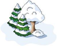 De boom en de sparren van de winter Stock Foto