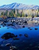 De boom en het meer van de berg in Xinjiang Royalty-vrije Stock Afbeelding