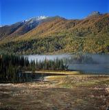 De Boom en het meer van de herfst in kanas Stock Foto's