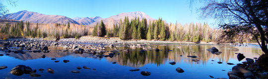 De boom en het meerpanorama van de berg stock foto