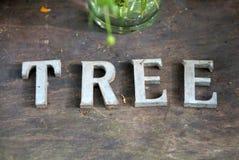 De boom galvaniseert het van letters voorzien op de houtvloer stock foto