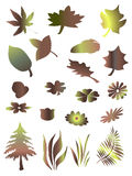 De boom, gras en doorbladert Royalty-vrije Stock Afbeeldingen