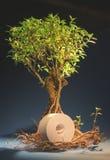 De boom met een broodje van document royalty-vrije stock foto's