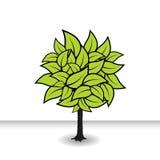 De boom met groen doorbladert. Vector Royalty-vrije Stock Fotografie