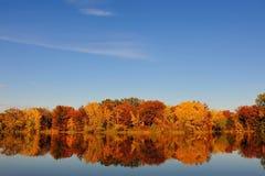 De Boom Scape van de herfst Royalty-vrije Stock Afbeeldingen