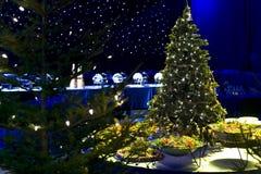 De boom van Chrismas en partijvoedsel Stock Foto