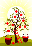 De boom van de appel Stock Afbeeldingen