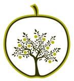 De boom van de appel in appel Stock Foto's
