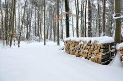 De boom van de besnoeiing met sneeuw wordt behandeld die Royalty-vrije Stock Foto
