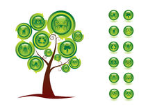 De boom van de ecologie Stock Foto's