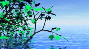 De boom van de esdoorn en mooi water royalty-vrije illustratie
