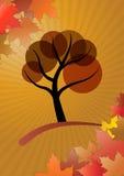De boom van de herfst Vector beschikbare illustratie Stock Afbeelding