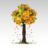 De boom van de herfst Vector beschikbare illustratie Royalty-vrije Stock Afbeeldingen