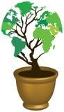 De boom van de kaarteco van de wereld Stock Foto's