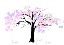 De boom van de kersenbloesem op witte achtergrond, Vectorillustratie Stock Afbeelding