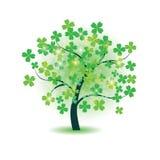 De boom van de klaver   Stock Fotografie