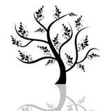 De boom van de kunst Stock Fotografie