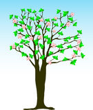 De boom van de lente Stock Fotografie