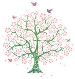 De boom van de lente Stock Foto's