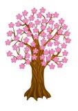 De boom van de lente, Stock Fotografie