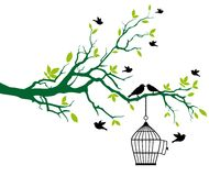 De boom van de lente met birdcage en het kussen vogels stock foto's