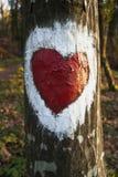 De boom van de liefde Stock Afbeeldingen
