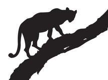 De Boom van de luipaard Vector Illustratie