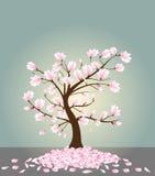 De boom van de magnolia Royalty-vrije Stock Afbeelding