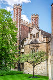 De boom van de Newtonsappel bij Drievuldigheidsuniversiteit, Cambridge Royalty-vrije Stock Fotografie