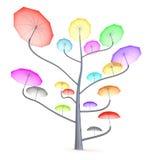 De boom van de paraplu Stock Foto's