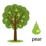 De boom van de peer Royalty-vrije Stock Afbeelding