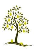 De boom van de peer