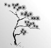 De boom van de pijnboom in zwarte Royalty-vrije Stock Afbeelding