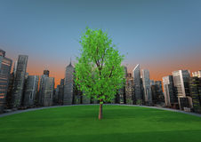 De boom van de stad Royalty-vrije Stock Afbeelding