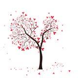 De boom van de valentijnskaart Stock Foto
