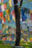 De Boom van de Vlag van het gebed stock afbeeldingen