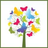 De boom van de vlinder Stock Afbeeldingen