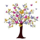 De boom van de vlinder Royalty-vrije Stock Fotografie